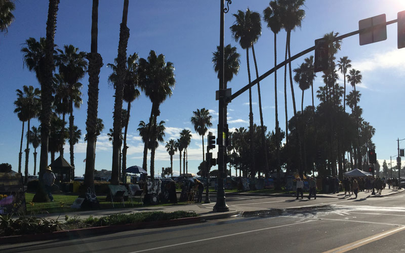 Palmen Santa Barbara Kalifornien USA Westküste