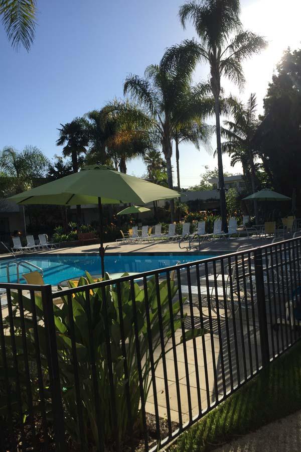 Pool im Lemon Tree Inn