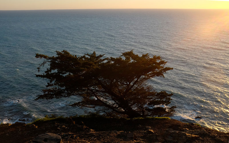 Sonnenuntergang beim Ragged Point